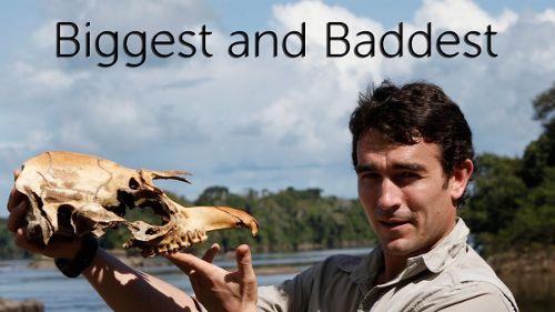 Biggest and Baddest