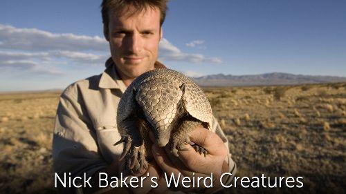 Nick Baker's Weird Creatures
