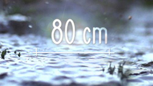 80 cm