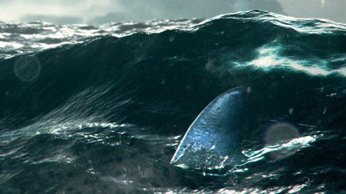 Blitzkrieg Sharks