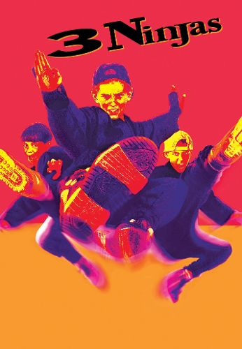 3 Ninja's