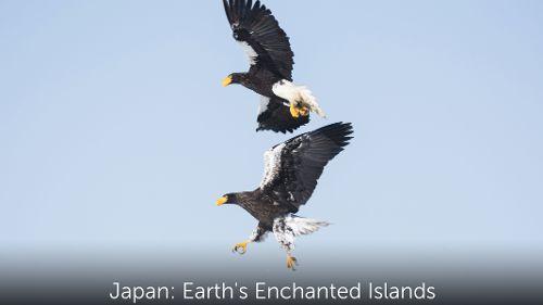 Japon, au coeur de la nature
