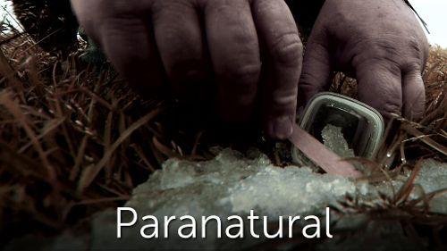 Paranatural