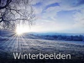 Winterbeelden