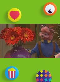 De bloemen van Wizzy