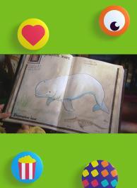 Witte walvis/Walrus